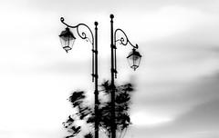 Afternoon in my place (Kiro Adesa Image Fisher) Tags: life street portrait people bw italy dog white abstract black abandoned colors cane canon landscape italia south persone mk2 5d astratto colori bianco ritratto nero paesaggio sud abbandonato irpino montecalvo