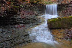 A drop on Schoolhouse Branch (MarcusDC) Tags: water limestone cascade redrivergorge danielboonenationalforest indiancreekroad