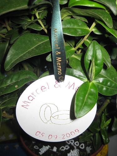 15mm groen lint met goud bedrukt in Comic Sans