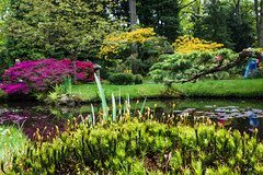 Japanse Tuin Clingendael 2014-02276 (Arie van Tilborg) Tags: japanesegarden denhaag thehague clingendael japansetuin clingendaelestate landgoedclingendael