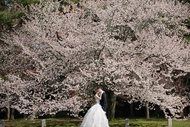 日本婚紗,關西婚紗,京都婚紗,京都植物園婚紗,京都御苑婚紗,清水寺和服,白川夜櫻,海外婚紗,高台寺婚紗,DSC_0011