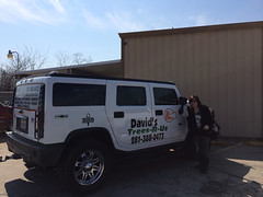 "Hummer Graphics for David's Trees R US <a style=""margin-left:10px; font-size:0.8em;"" href=""http://www.flickr.com/photos/69723857@N07/15891789543/"" target=""_blank"">@flickr</a>"
