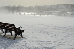 lonely bench (Krasivaya Liza) Tags: winter white snow storm cold ice out point harbour snowy connecticut freezing ct stormy freeze stamford icy blizzard drifts chily sleet wintry stamfordharbour winter2015