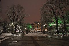 Park at night (Francisco Anzola) Tags: trees night sofia bulgaria