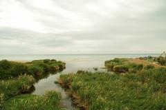 Desembocadura del rio algar (snchez.maribel) Tags: naturaleza rio agua altea