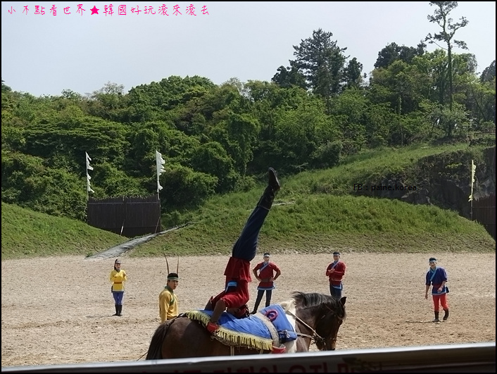 濟州The馬park (14).JPG