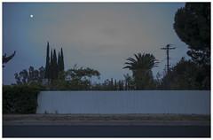 LA 66 (misu_1975) Tags: street leica blue sky digital 35mm la losangeles summicron f2 magichour leicamp typ240
