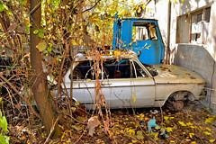 bmw 2002 (riccardo nassisi) Tags: auto abandoned car rust rusty scrapyard wreck scrap wrecked ruggine relitto pavia rottame fornace epave abbandonata