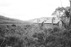 In Tasmania: Hut at Mt Field National Park (Milo R.) Tags: leica tree film analog 35mm jungle tasmania f2 idyll prehistoric m6 leicam6 mtfield auatralia