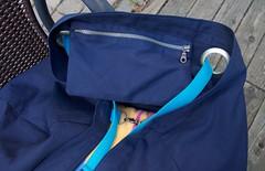 gigantic blue Ikea bag zipper pocket (foxthreads) Tags: beach bag sewing gym tote