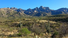 Catalina State Park (Debbi Brude) Tags: catalinastatepark hiking naturewalk