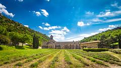 Abbaye de Snanque (bonacherajf) Tags: monastre abbaye snanque lubron cistrcien