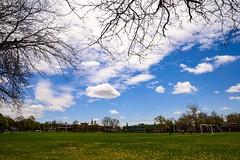 Soccer field (dandelion) (vinnie saxon) Tags: flowers sky urban field clouds landscape nikon soccer wideangle dandelion d600 nikoniste