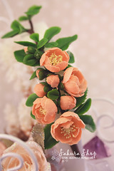 Polymer clay Chaenomeles (Mrs-Cloudia-S) Tags: pink flowers plant flower handmade clay bouquet brooche headband polymer chaenomeles