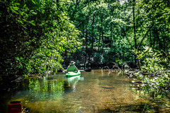 Lake Oolenoy Kayaking-16 (RandomConnections) Tags: us unitedstates southcarolina kayaking paddling pickens pickenscounty lakeoolenoy tablerockstatepark knobhistorical