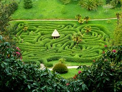 Distant view of maze at Glendurgan Gardens (Jayembee69) Tags: maze garden glendurgan nt nationaltrust cornwall england english gb britain uk unitedkingdom