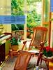 Комнатные и садовые растения от А до Я 2014 26