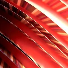 striped stripes (vertblu) Tags: red abstract macro monochrome lines paper pattern dof stripes patterns curves curvy minimal diagonal abstraction minimalism curve makro hmm striped macromode abstrakt transcending 500x500 minimalismus redtones paperstrips macromondays aglitchinthesystemanabstractviewofdailylife vertblu