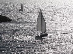 Un voilier (Hlne_D) Tags: sea mer france museum boat marseille muse paca provence bateau mediterraneansea vieuxport voilier mditerrane sailingboat bouchesdurhne mermditerrane provencealpesctedazur mucem musedescivilisationsdeleuropeetdelamditerrane hlned