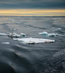 P1110654 (TallGrass-IA) Tags: snow nature norway lumix panasonic svalbard arctic micro g6 43 linblad 1235 expeditions mirrorless