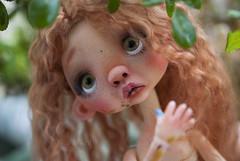 """"" (Koala Krash) Tags: cute ball ginger spring doll dolls bjd joint childish jointed balljointeddoll balljointdoll anako jpopdoll darkdojy koalakrash dododoll"
