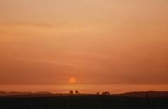 Solnedgang (pervisti) Tags: solnedgang sunset vesterhavet north sea lnstrup maarup danmark denmark vendsyssel summer