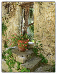 The test of time (judmac1) Tags: old window decay steps flowerpot