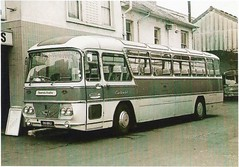 Shamrock & Rambler, 77 Holdenhurst Road, Bournemouth, Dorset (Alwyn Ladell) Tags: dorset bournemouth shamrockrambler holdenhurstroad 99bru