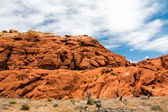 red rock canyon - red rocks
