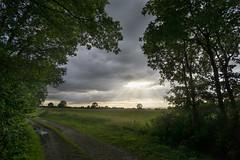 Gennep (RigieNL) Tags: landscape nature landschap natuur nederland holland netherlands clouds sun sunray zon sundown sunrays