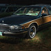 1996 Buick Roadmaster Estate (2016 ISWC Station Wagon Annual Convention)