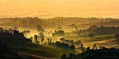 Toscana sunrise (Martin Zurek) Tags: travel italien trees light vacation sun holiday green nature yellow fog sunrise landscape golden flickr italia glow quiet smooth dream it hour tuscany lonely rays toscana dreamland breathtaking dreamscape montefollonico sunglow 500px torritadisiena canon5dsr 5dsr