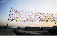 307 - Balloons in Motion (Ata Foto Grup) Tags: sea sky motion game turkey seaside rocks shoot wind stones baloon türkiye windy istanbul ontherocks target shooting aim yun deniz kaya baloons ara balon gökyüzü taş ateş hareket marmaradenizi rüzgar tüfek hareketli windmotion hedef denizkenarı hedefatışı targetinmotion
