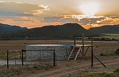 004 (Riaan Human) Tags: travel nature southafrica karoo swartbergmountains