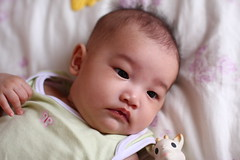 17W1D (Little Bunny 2013) Tags: baby girl taiwan