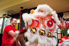 IMG_9807 (libertineeats) Tags: chinese melbourne mornington diggers liondance