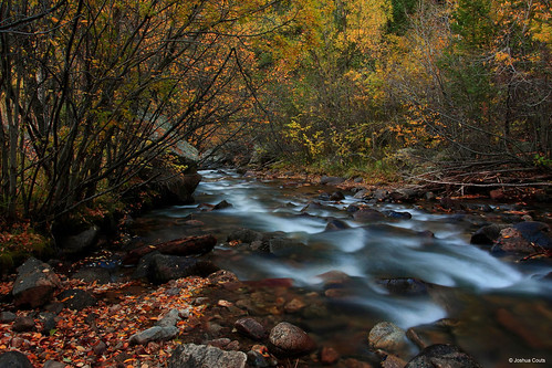 Photo - Lefthand Creek at the Buckingham Park picnic area.