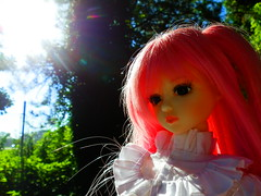 Sunlight (Liz/Daifuku_Darling) Tags: ball doll amy super sd resin dollfie sr jointed islanddoll