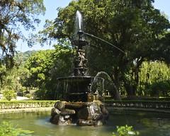 Jardim Botnico do Rio de Janeiro (alobos Life) Tags: brazil naturaleza nature rio brasil ro de la do janeiro sony botnico vegetation jardn reserva botnico vegetacion biosfera nex5r