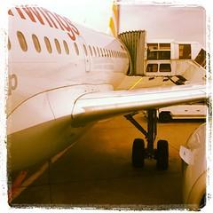 airport #igers #igersfirenze #koln #bonn #cologne... (arakiboc) Tags: travel germany fly airport bonn cologne koln iphone picoftheday germanwings igers iphonesia igersfirenze igerstoscana uploaded:by=flickstagram instagram:venue_name=kc3b6lnbonnairport28cgn29 instagram:venue=953693 instagram:photo=48546969382324682716780855