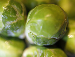 brussell sprouts… macro monday theme 'vegetable' (Dawn Porter) Tags: vegetable macromonday