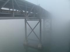 Bay Bridge fog 3/11 (Jef Poskanzer) Tags: bikepath fog geotagged baybridge alexanderzuckermannbikepath geo:lat=3781968 geo:lon=12234263
