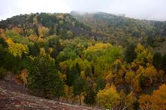 Autunno Etneo (Hlose Picot) Tags: autumn automne volcano sicily autunno etna sicilia vulcano volcan etnaland sicile
