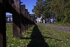 a break against the guardrail (1 of 1) (bistro22380) Tags: fall leaves trail sunnyday