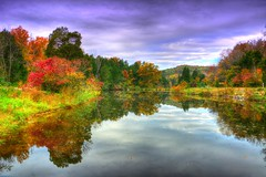 Autumn Lake (Phyllis74) Tags: autumn lake fall forest bernheimforest