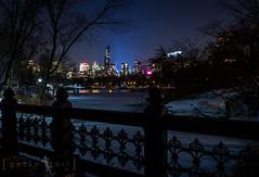 Midtown on Ice (Gecko Art) Tags: nyc newyorkcity travel winter snow newyork night centralpark citylights centralparklake