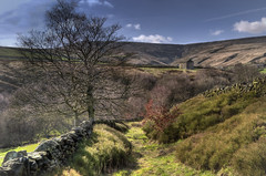 Towards Holme Moss (Osgoldcross Photography) Tags: tree nature grass wall barn rural landscape moss spring nikon raw path peakdistrict sunny hills clear step bleak stonewall hillside grassland mossy westyorkshire holmemoss outbuilding holme nikond5000