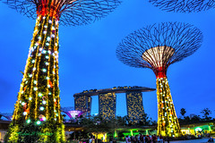 DSC_0827_tonemapped (Hafizul I Choudhury) Tags: trees night singapore marinabay lightsandsounds gardenbythebay
