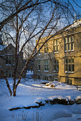 mu campus_snow_2014_0049 (CAFNR) Tags: cafnr mizzou mu campus mo missouri university snow winter fresh morning building columbia como february snowy cold collegebeauty schweitzerhall