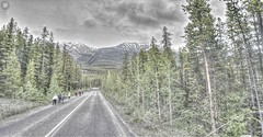 """Google Street View - Pan-American Trek - Walk this way (kevin dooley) Tags: street canada ice trek google highway bc view columbia des 93 hdr icefields panamerican photomatix parkway"""" """"street view"""" columbia"""" """"british """"google """"promenade glaciers"""" """"icefields {vision}:{outdoor}=0955 {vision}:{sky}=0521 {vision}:{mountain}=0892 {vision}:{plant}=0685"""